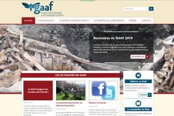 Vue du site internet du Gaaf