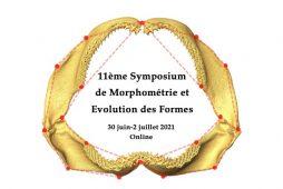 Logo SMEF2021